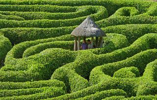 environmental data management can be a maze