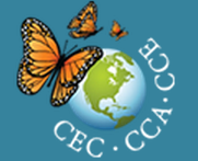 CEC_-_CEC_Talks_Webcast_CECTalks_Webcast_-_Google_Chrome_2013-07-11_13-17-30